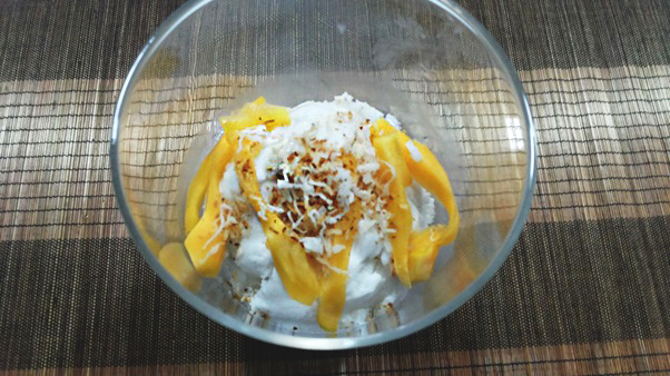 Coconut Ice Cream with Shredded Coconut 2