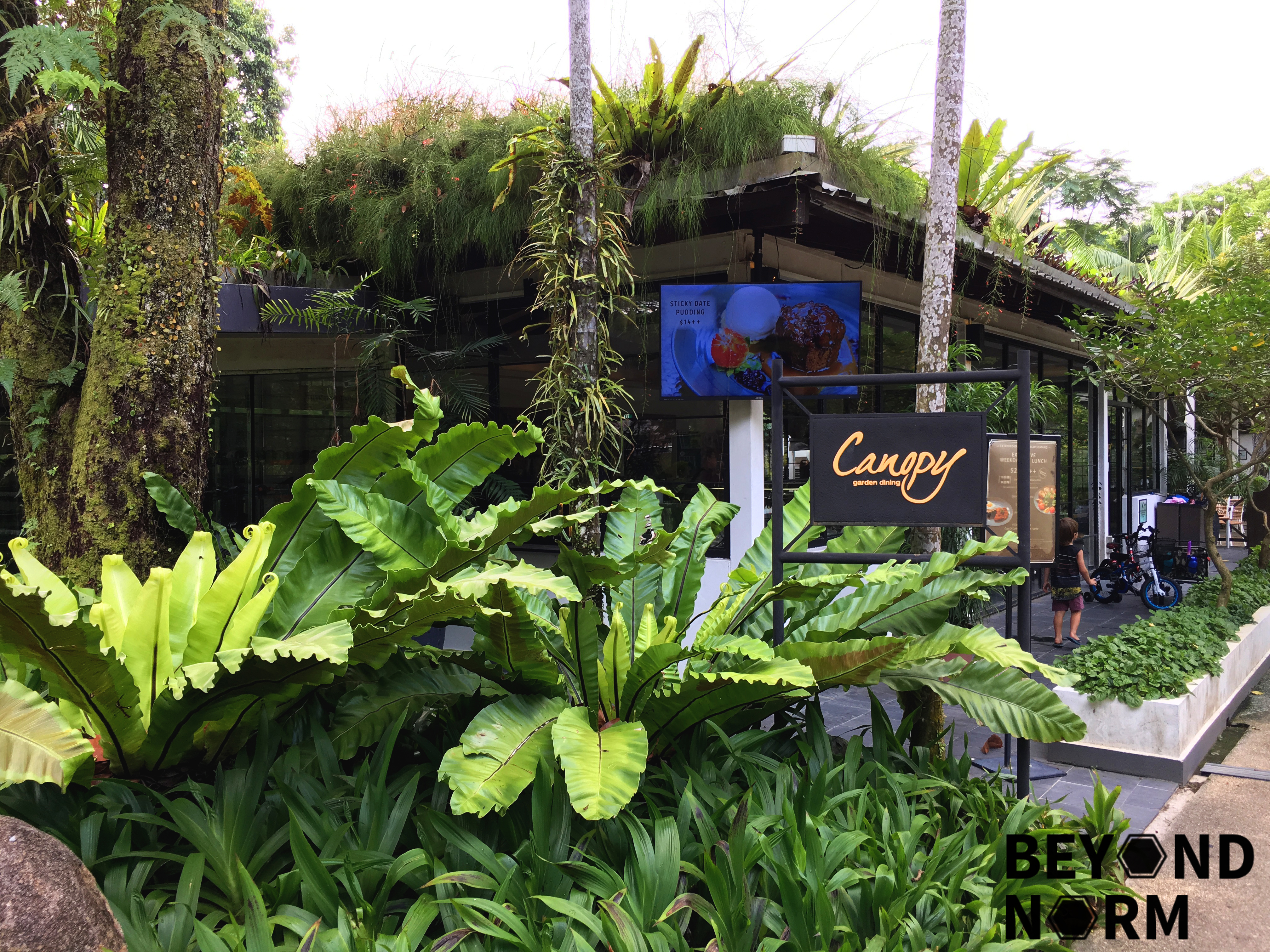 Food Review Canopy Bishan Amk Park Singapore